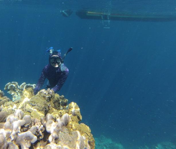 Palung Kakaban, sisi lain terumbu karang langsung perairan dalam