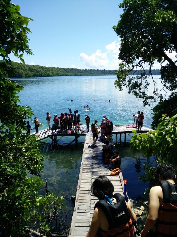 Naik turun undakan tangga kayu, akhirnya sampai juga di danau Kakaban yang fenomenal